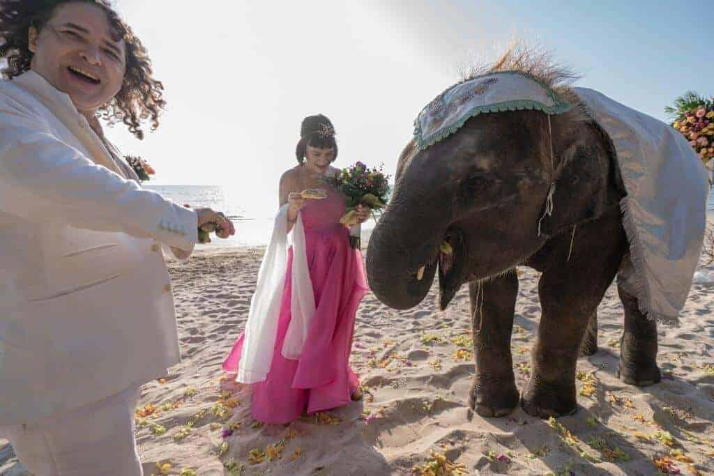 Janice-Mark-Thai-Western-Wedding-27th-Feb-2020-394
